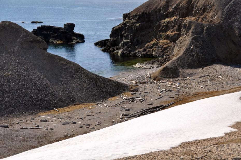 rots- bereneiland