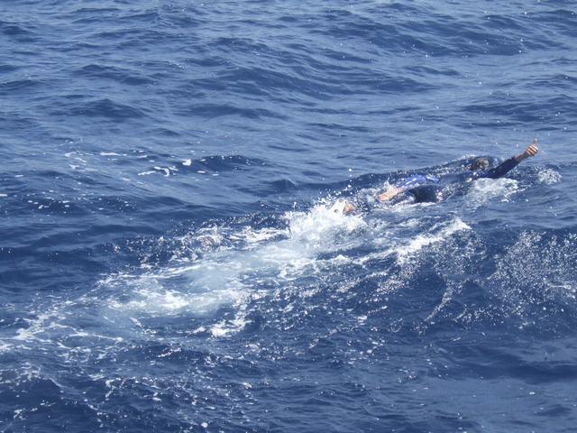 sam zwemt naast walvis golf van biskaje