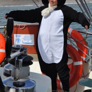 pinguin aan boord Antarctica