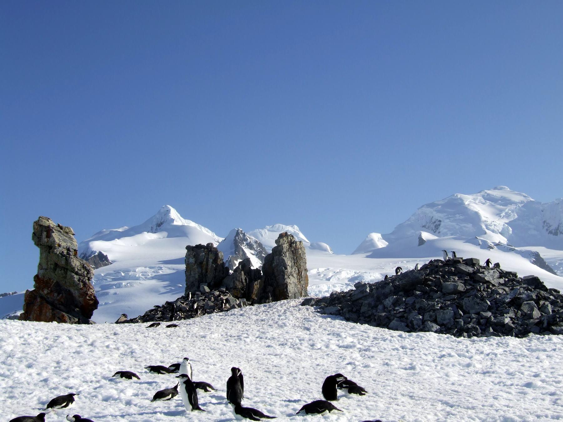 Antarktis Expedition mit der Anne-Margaretha